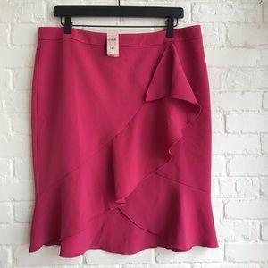 New NWT Ann Taylor Factory Work Pink Skirt 14